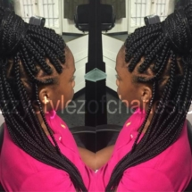 braids_style